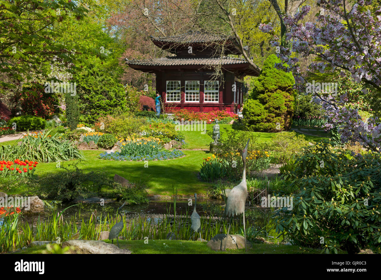 BRD, Deutschland, NRW, Leverkusen, Japanischer Garten in der Carl-Duisberg-Parkanlage - Stock Image