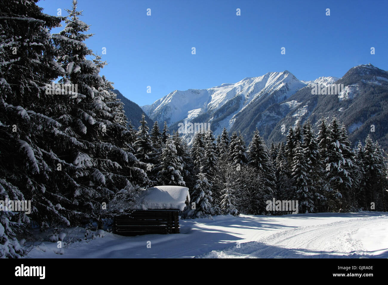 winter magic in neukirchen - Stock Image