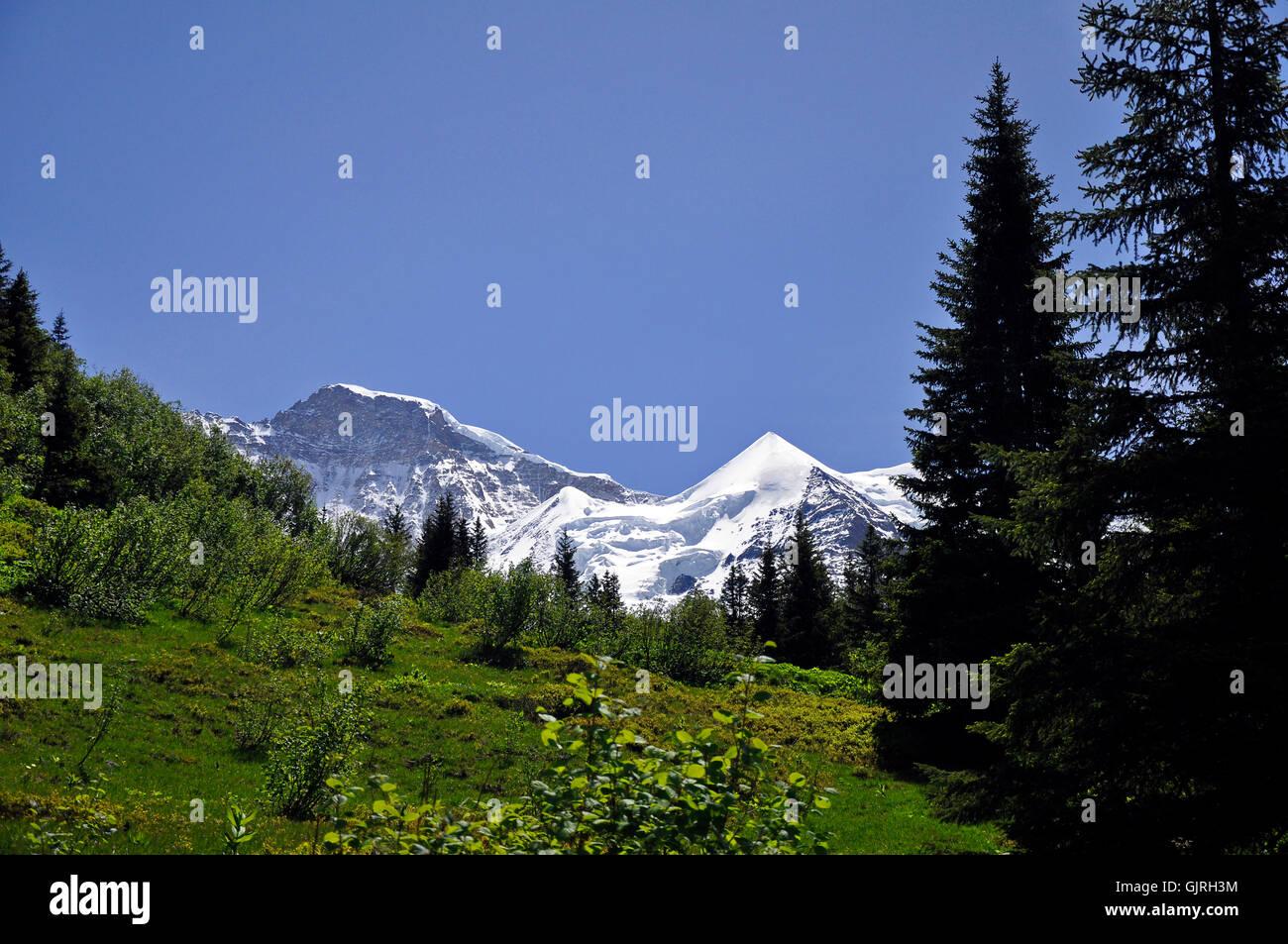 mountains alps alp - Stock Image