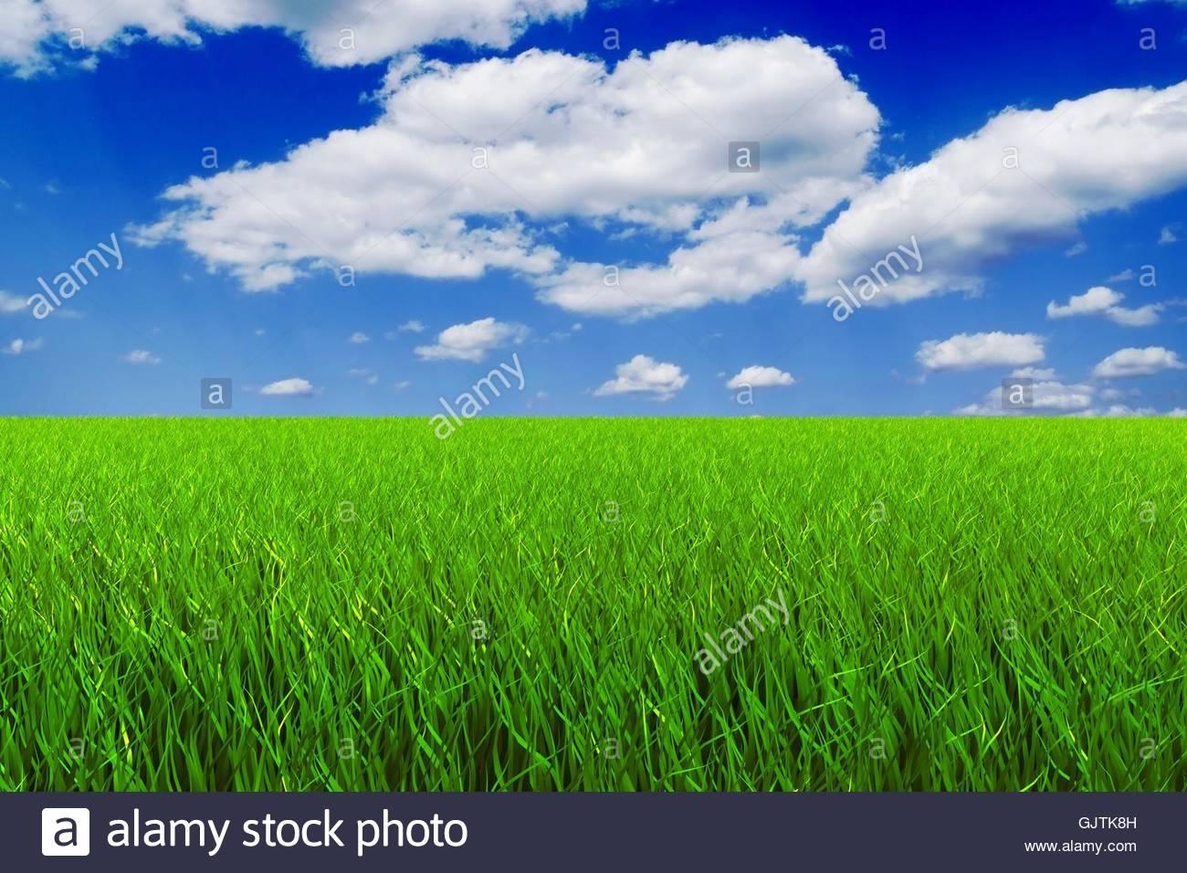 meadow firmament sky - Stock Image