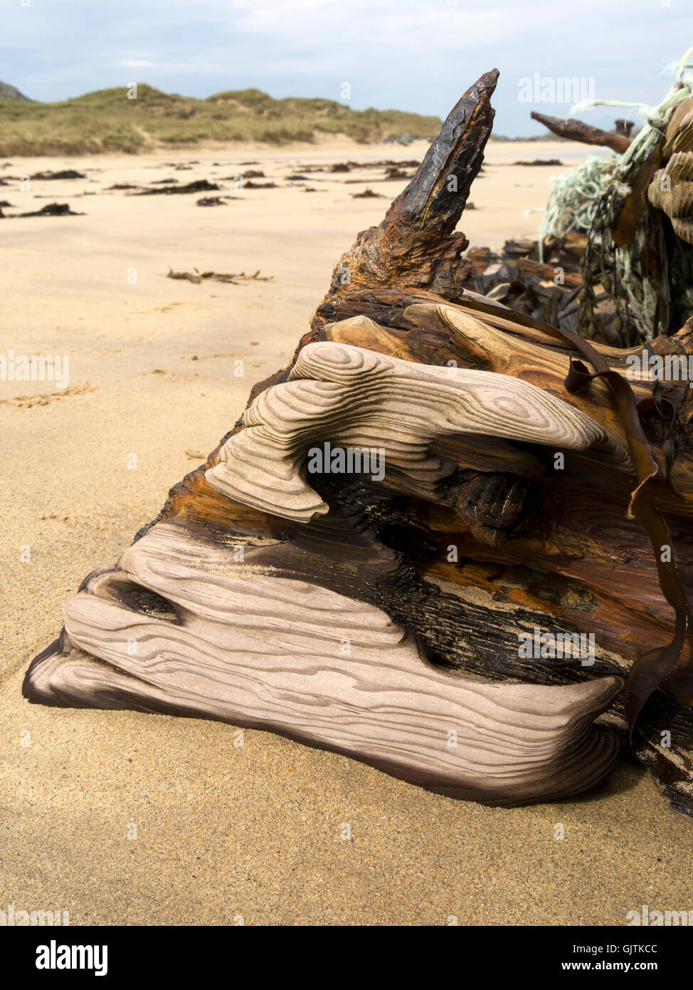 Sand weathered washed and worn oak driftwood timbers on old beach shipwreck, Balnahard Beach, Isle of Colonsay, - Stock Image