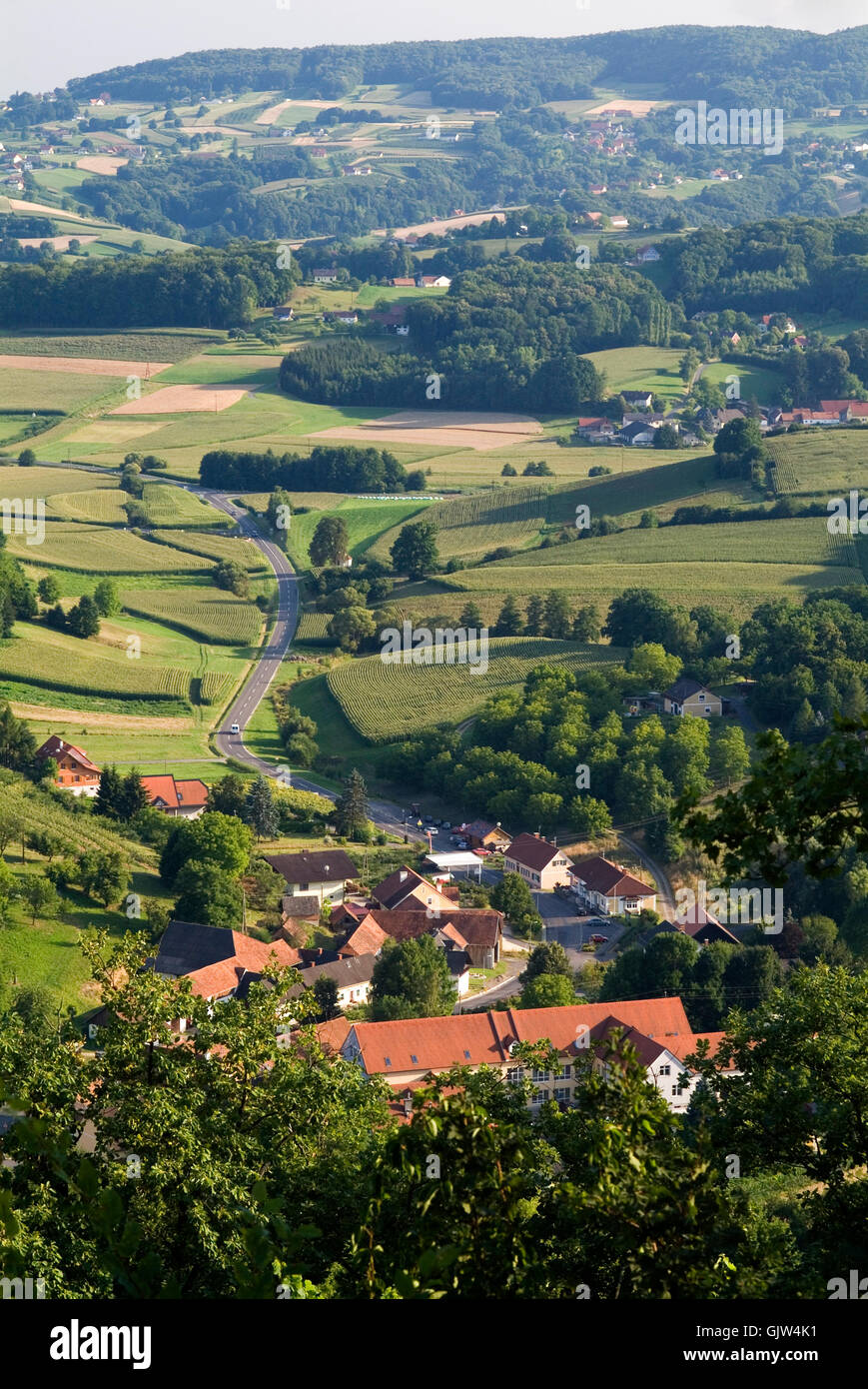 wine hills of styria - Stock Image