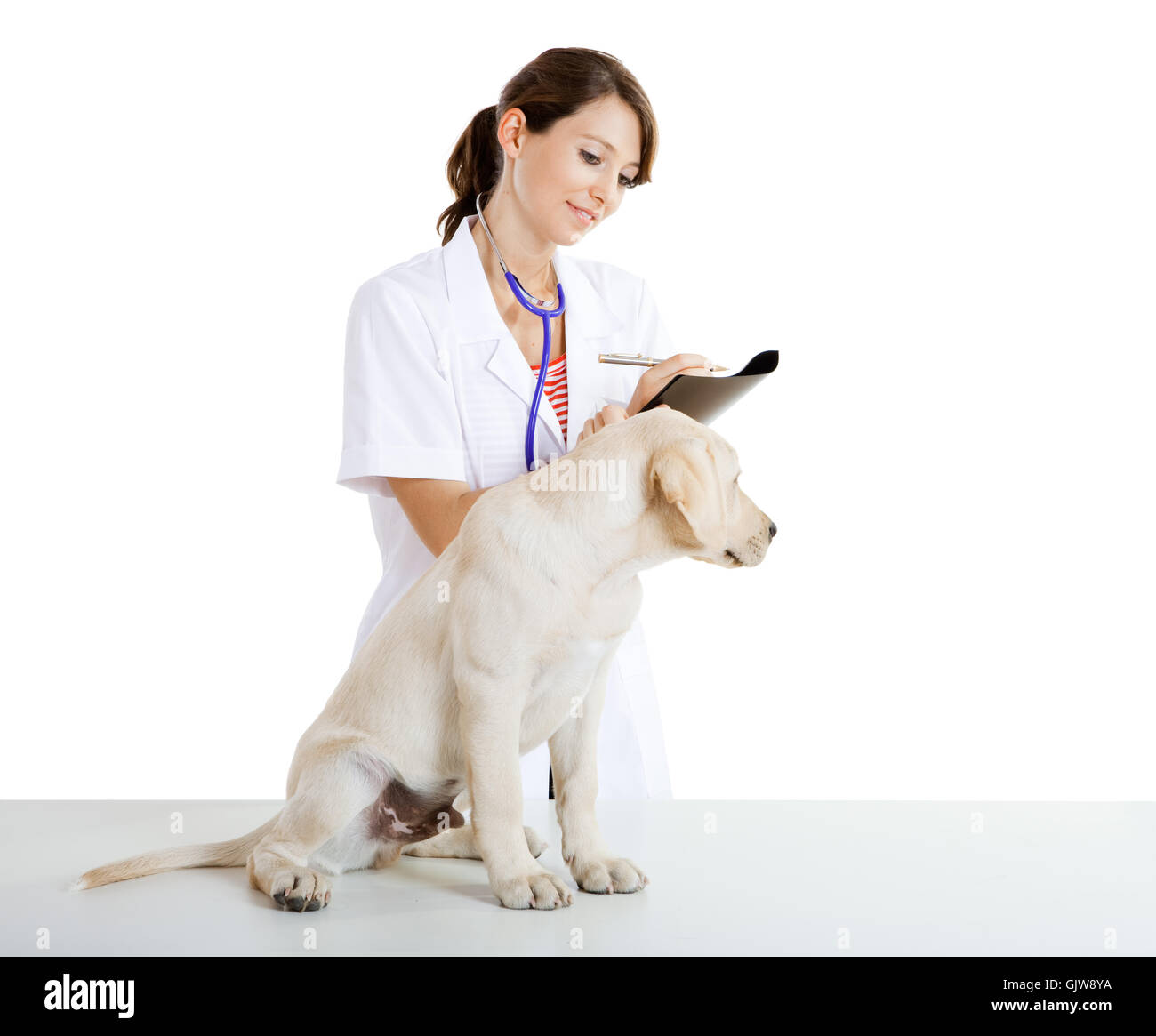 woman female animal - Stock Image