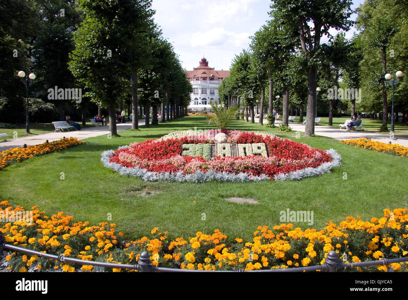 park flower flowers - Stock Image