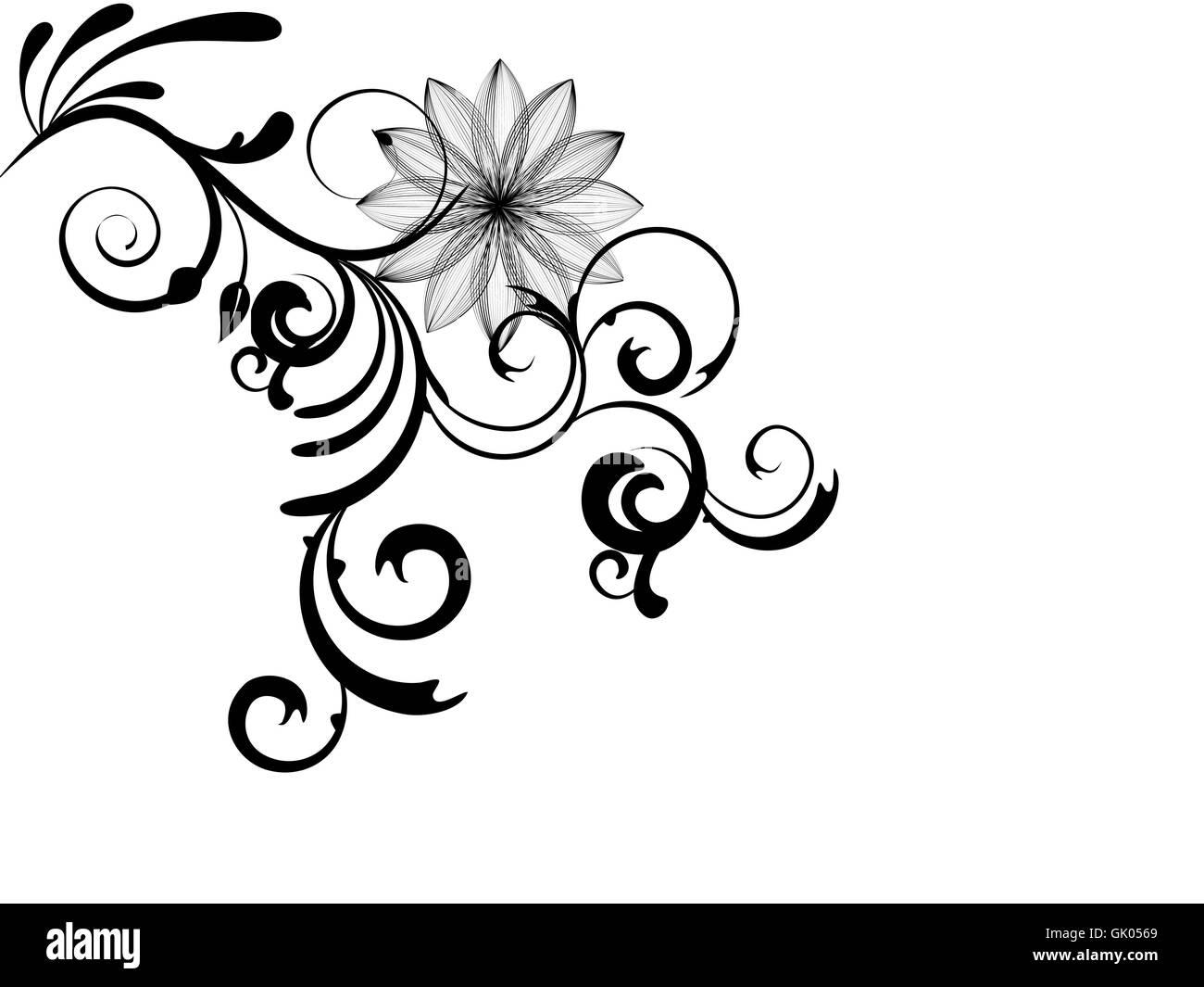 flower plant summer - Stock Image