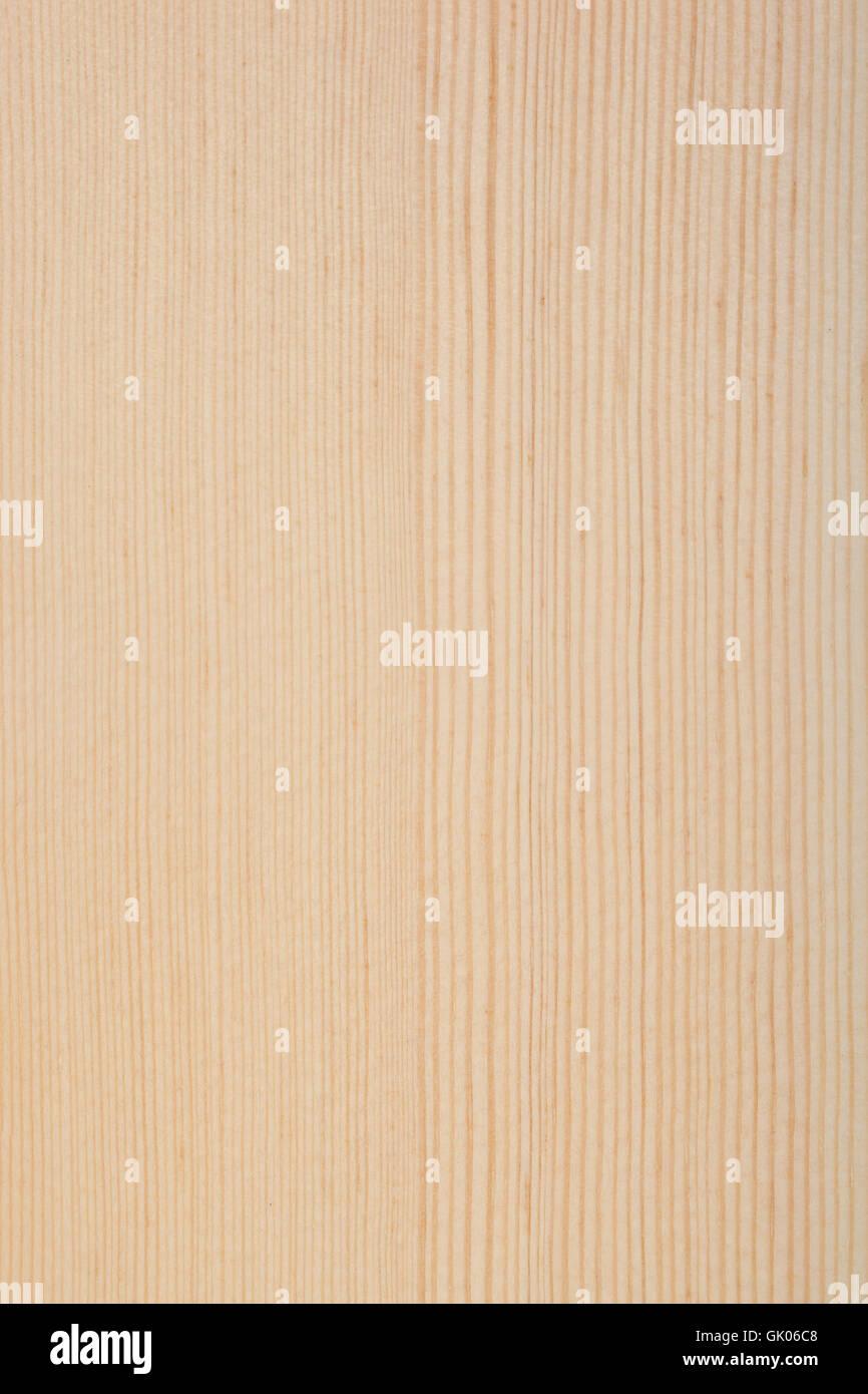 wood pine conifer wood - Stock Image