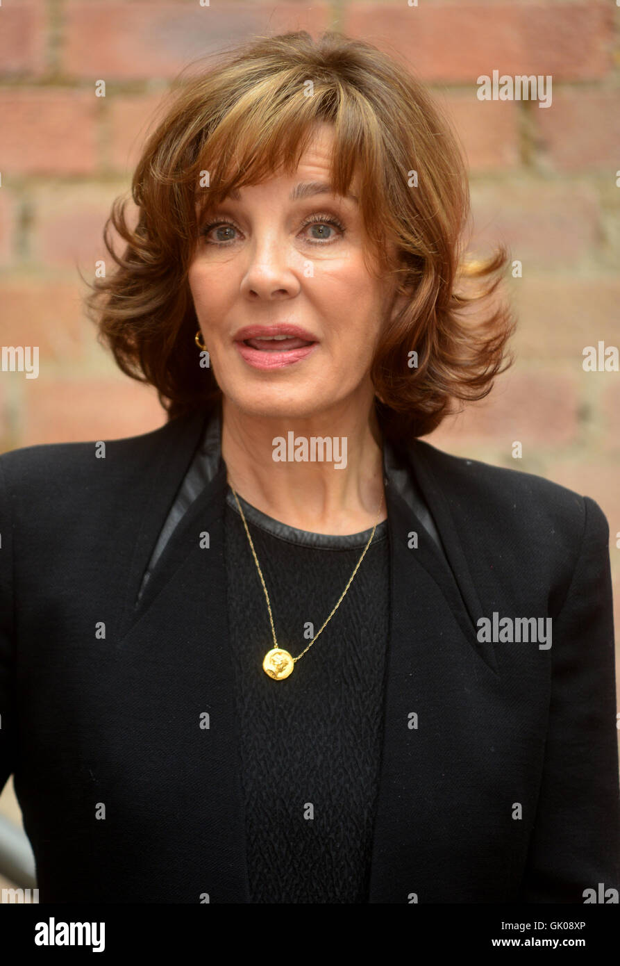 Watch Anne Archer video