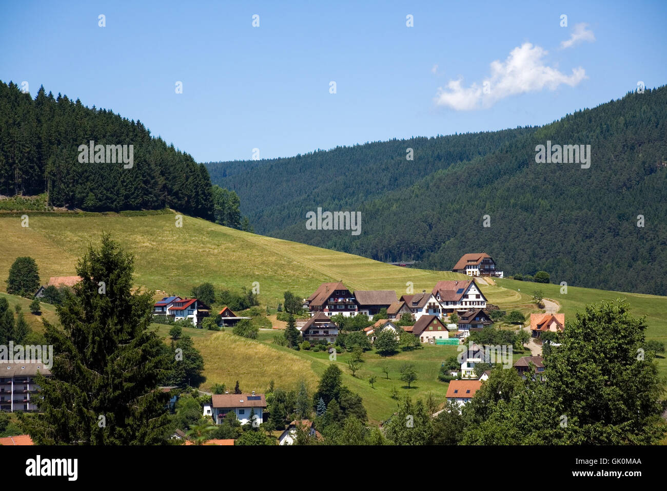 conifer black forest style of construction - Stock Image