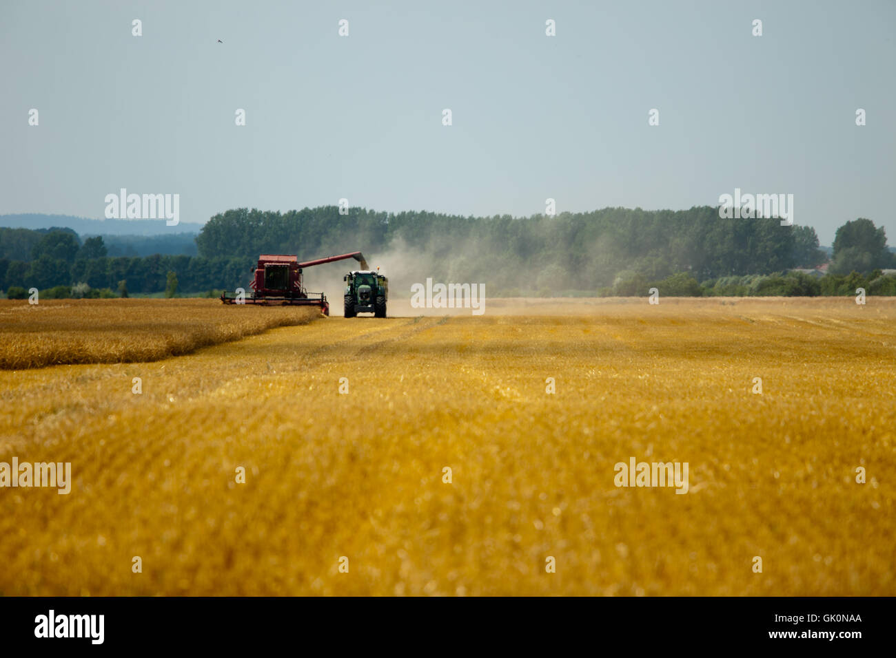 agriculture farming field Stock Photo
