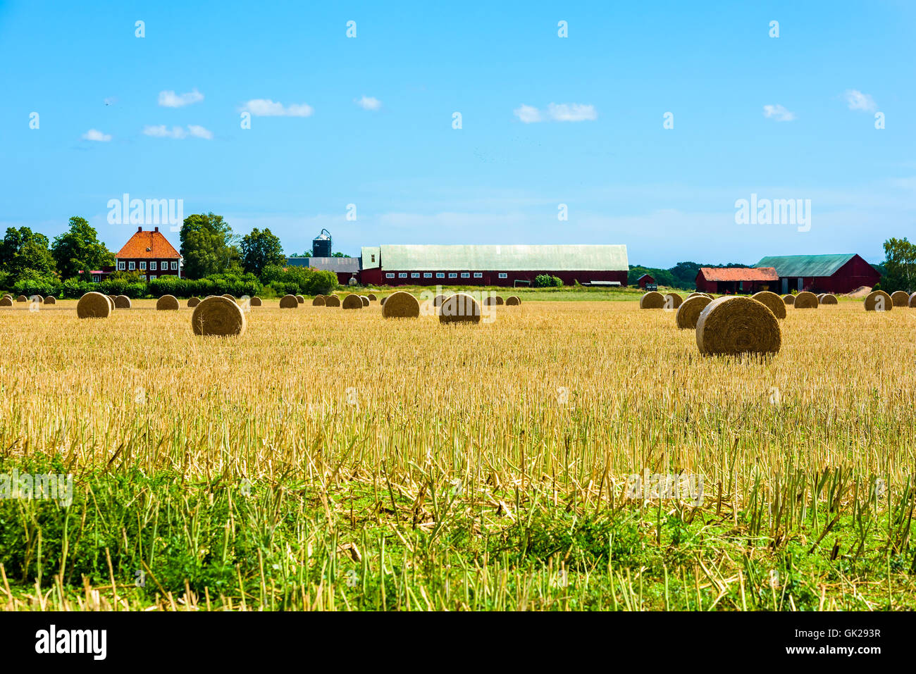 Kalmar, Sweden - August 10, 2016: Typical farmland landscape from the southeastern part of Sweden. Late summer and - Stock Image