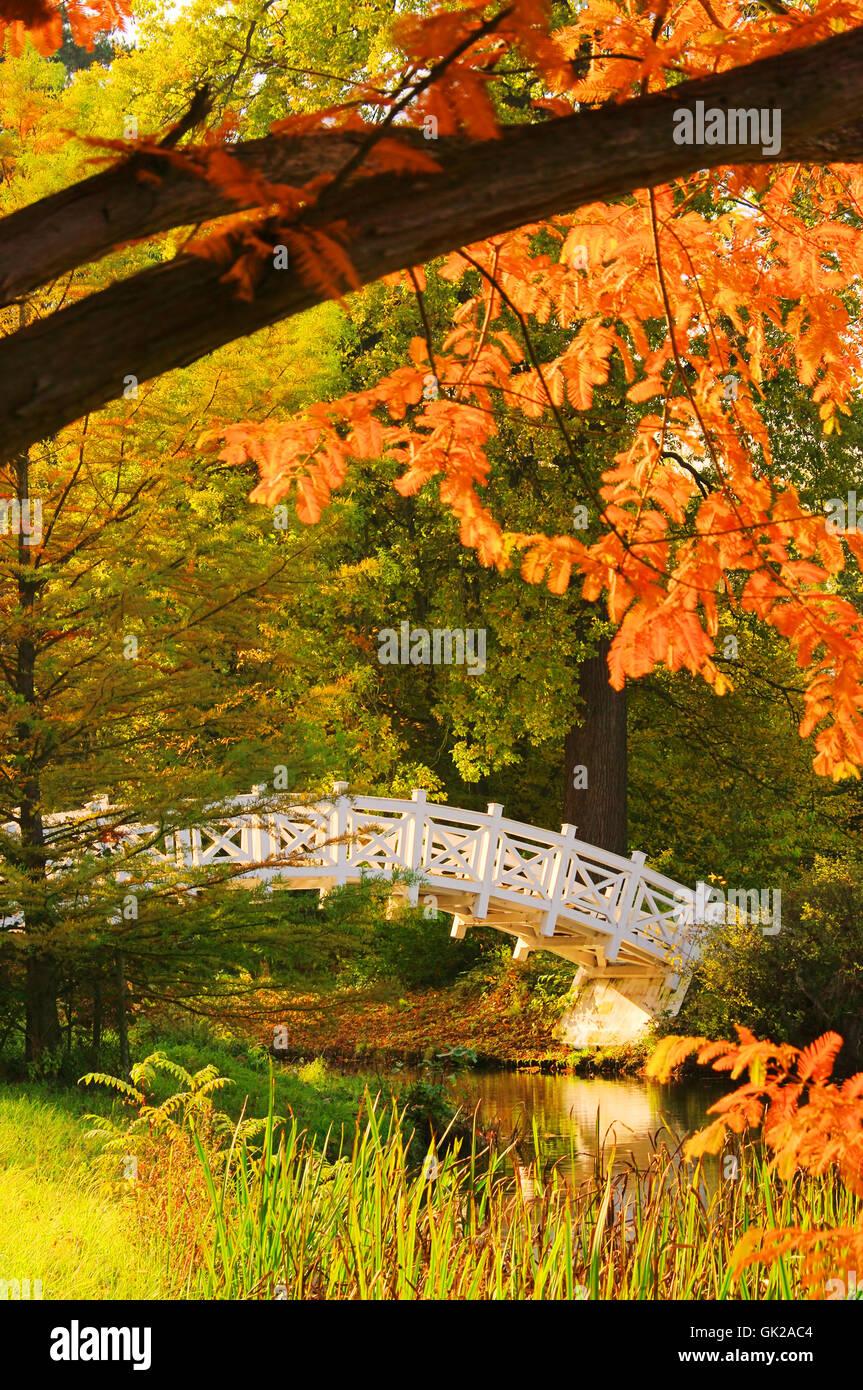 woerlitzer park weisse bruecke - english grounds of woerlitz white bridge 04 - Stock Image