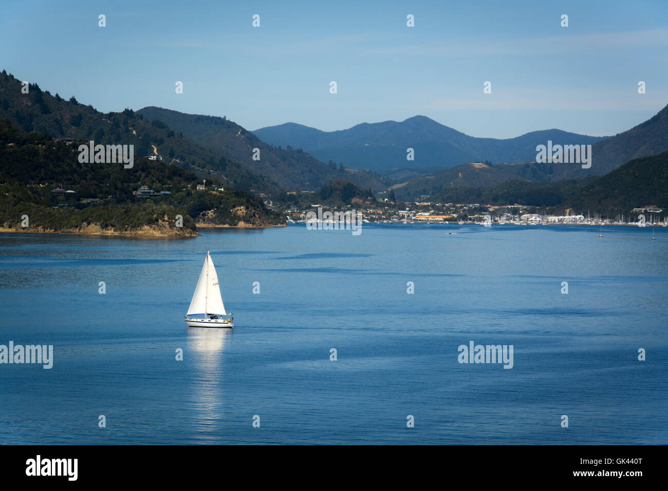 Port of Picton seen from ferry from Wellington to Picton, New Zealand Stock Photo