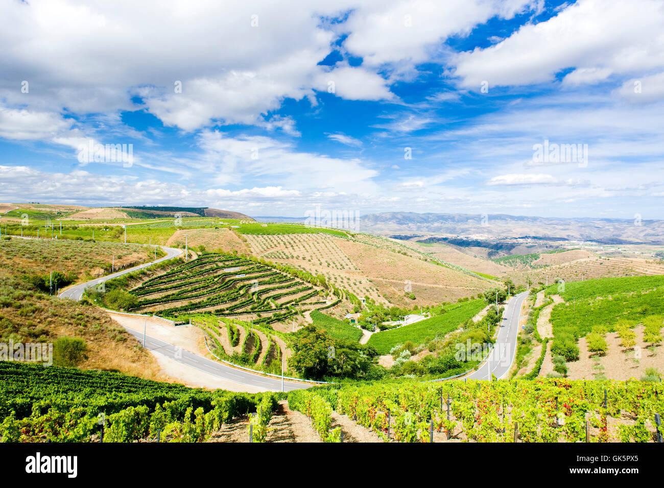 wine arrangement travel Stock Photo