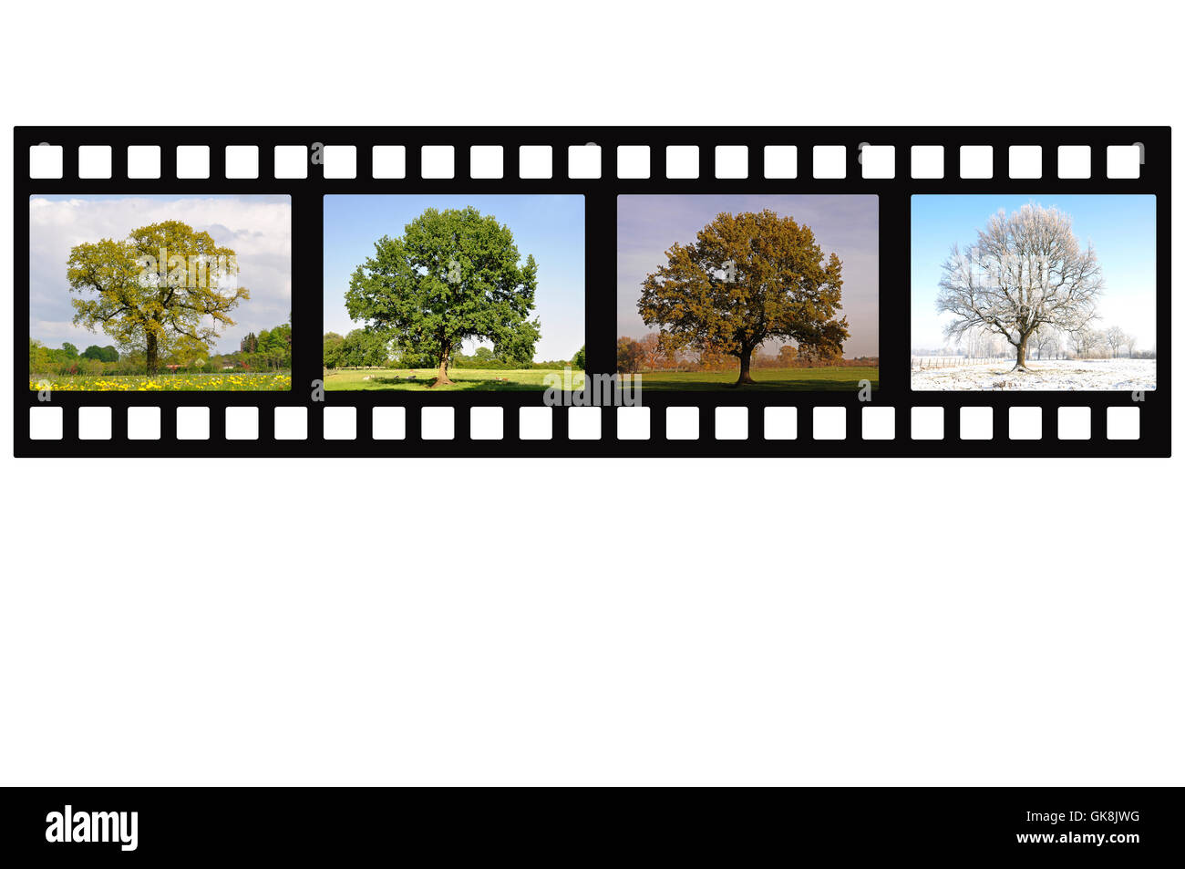 winter summer summerly - Stock Image