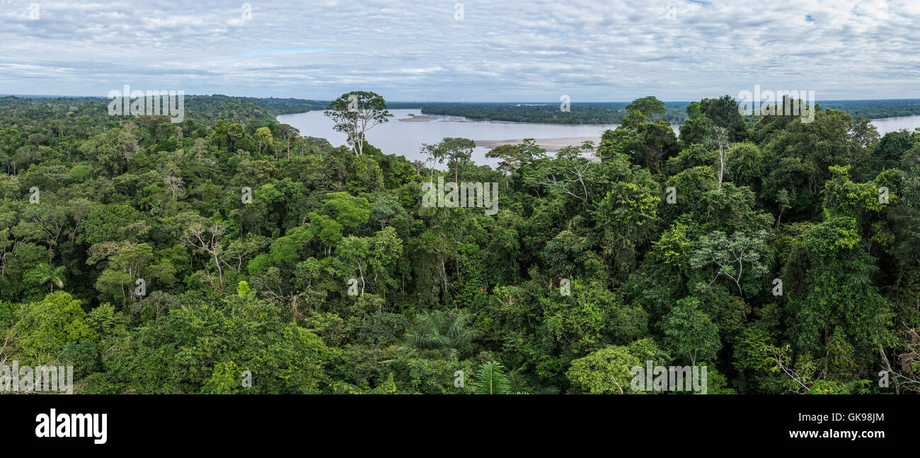 Panoramic view of rain forest canopy and Rio Napo in the Amazons. Yasuni National Park, Ecuador, South America. - Stock Image