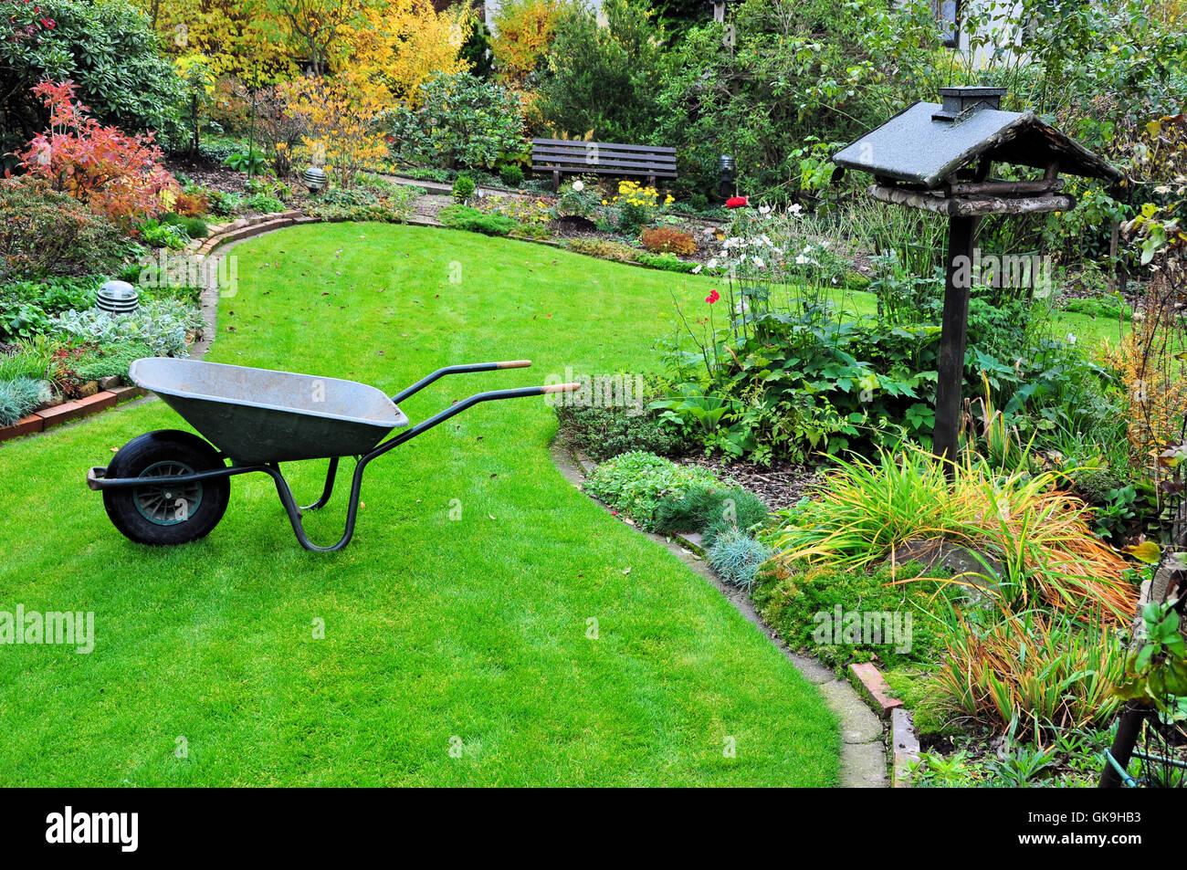 gardening with wheelbarrow in autumn garden - Stock Image