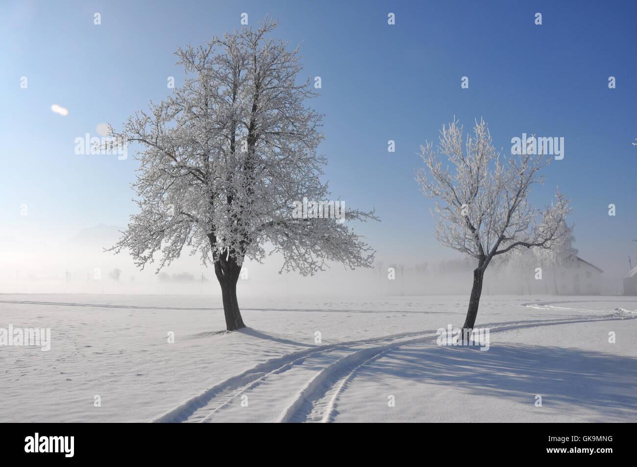 winterlandschaft Stock Photo