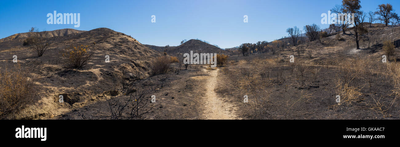 Wide area of destruction stretches on either side of California wildfire burn zone. Stock Photo