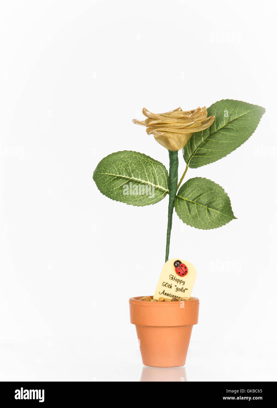 Golden anniversary flower - 'Happy 50th 'gold' anniversary' - Stock Image