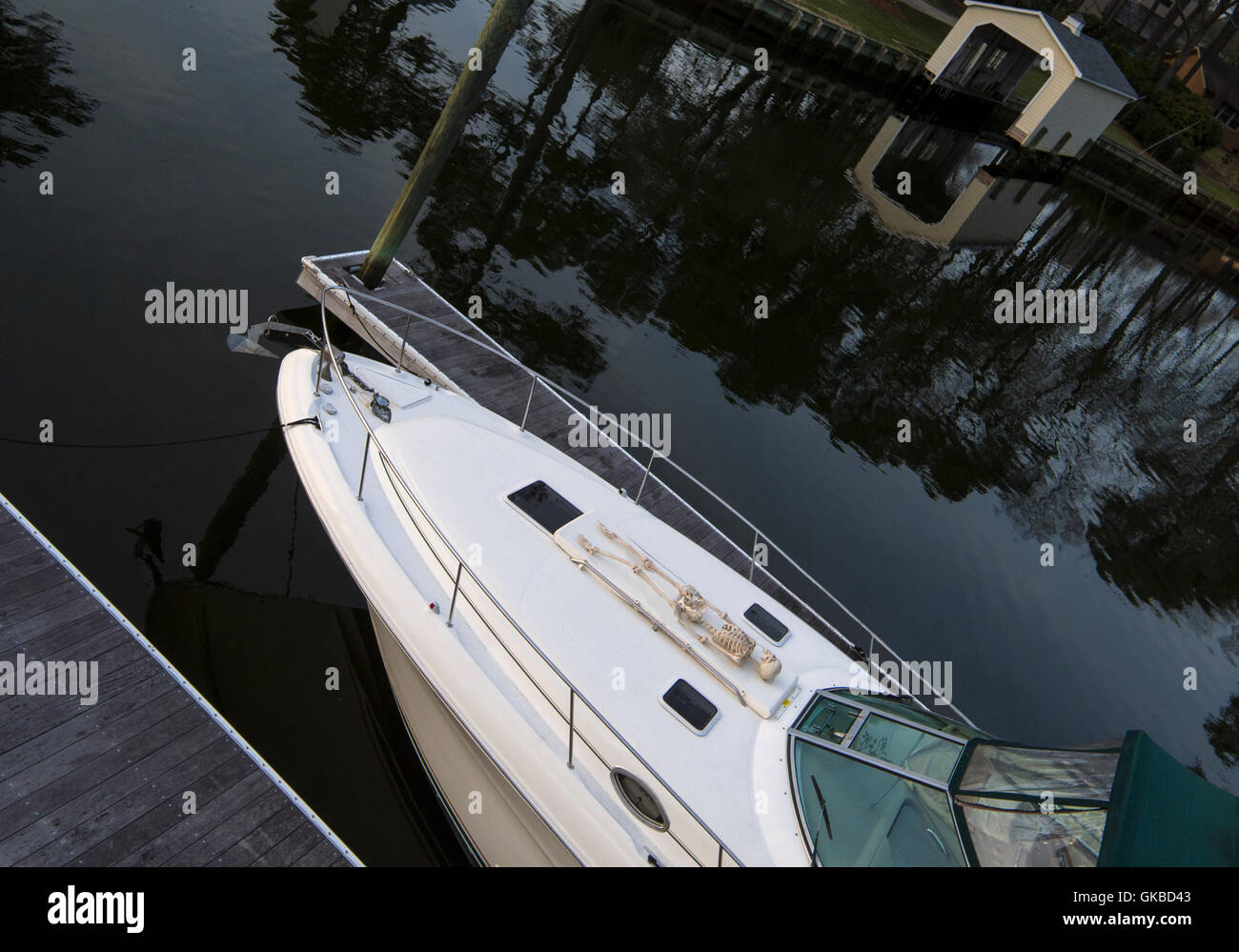 Aerial of a skeleton on the bow of a Sea Ray 340, Virginia Beach, VA - Stock Image