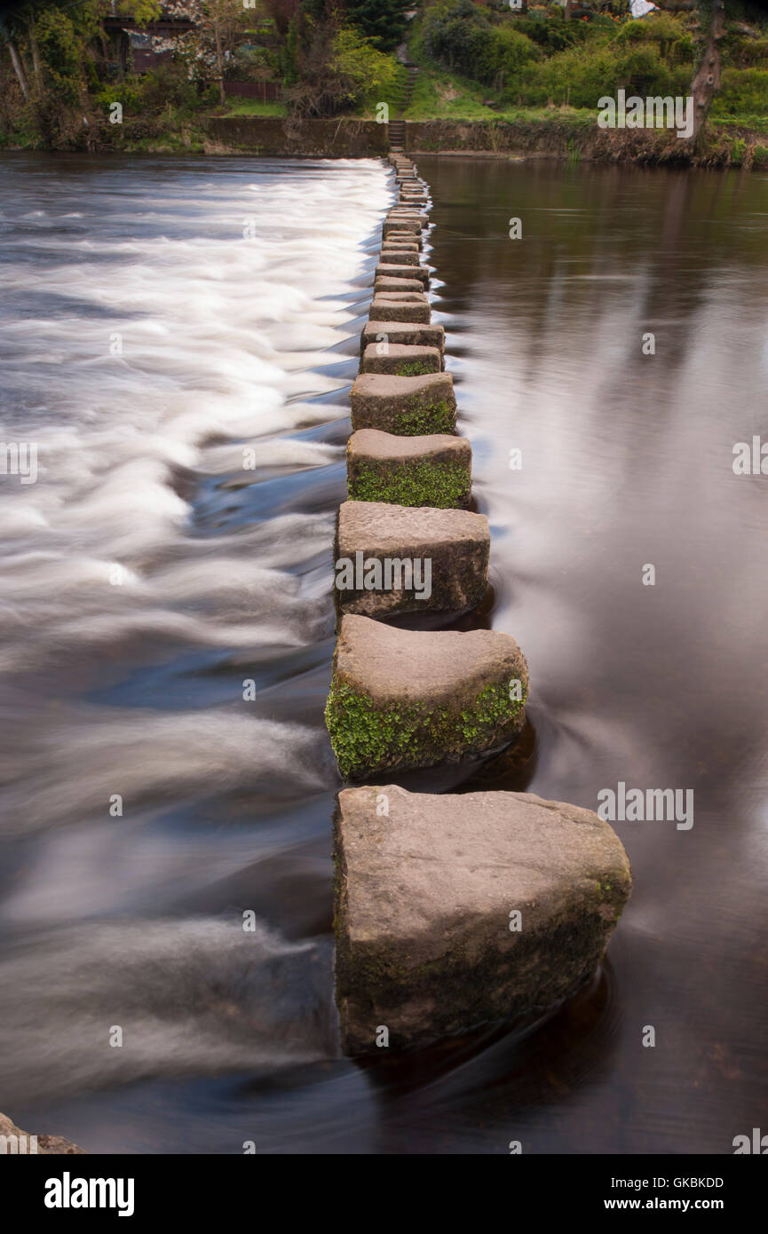 Slow shutter speed, low viewpoint, close-up of stepping stones (stone blocks) crossing flowing water of River Wharfe, - Stock Image