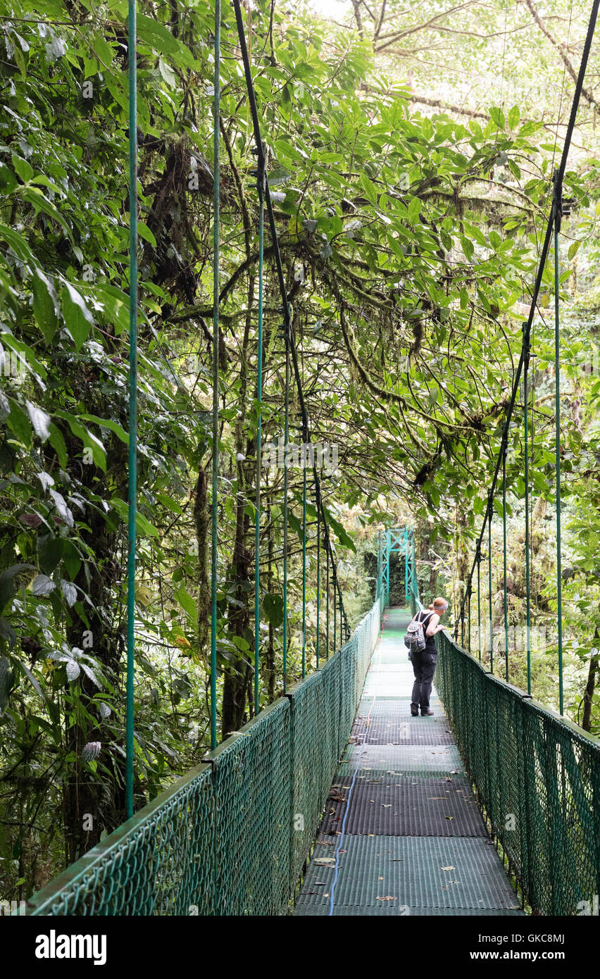 A woman tourist looking down from a canopy bridge, Monteverde cloud forest, Costa Rica, Central America - Stock Image