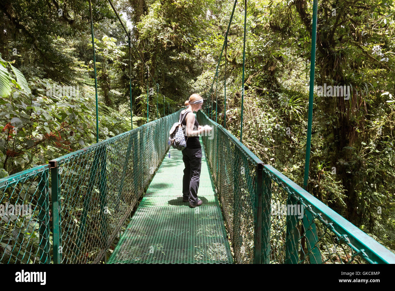Woman tourist  walking on a canopy bridge, Monteverde cloud forest reserve, Monteverde, Costa Rica, Central America Stock Photo