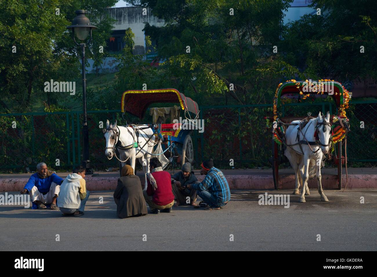 Drivers of horse-drawn carriages, Agra, Uttar Pradesh, India, Asia - Stock Image