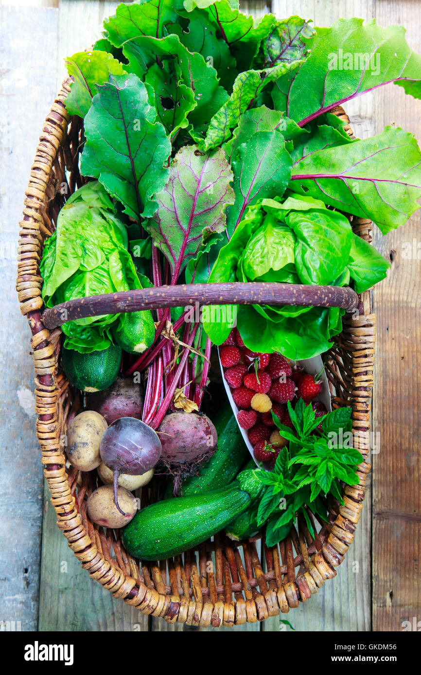 Basket with freshly picked garden produce - Stock Image