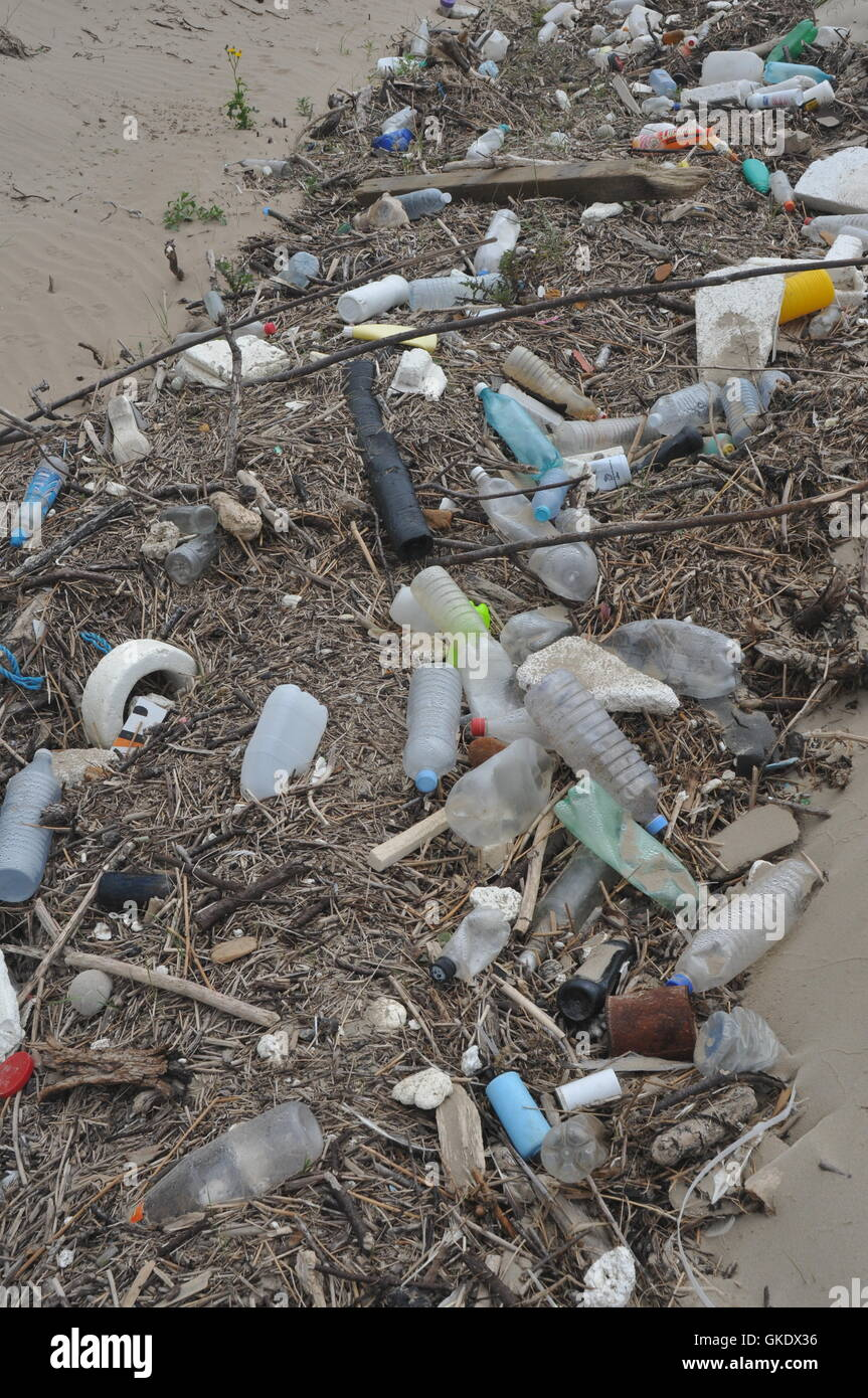 Piles of rubbish on a sandy beach including plastic bottles, rope, drift wood, plants growing environmental concerns - Stock Image