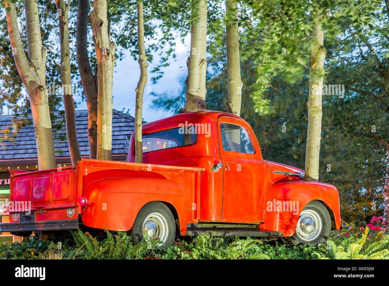 Red Pickup Truck Stock Photos Images Alamy 1951 52 Ford Pick Up Art Installation Called Grove Encroached Upon By