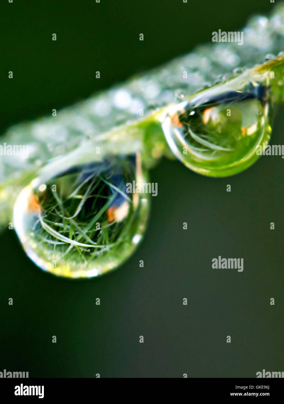 waterdrop water - Stock Image