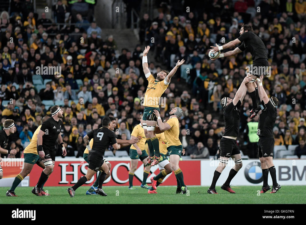 Sydney Australia 20th Aug 2016 The Rugby Championship And Stock Photo Alamy