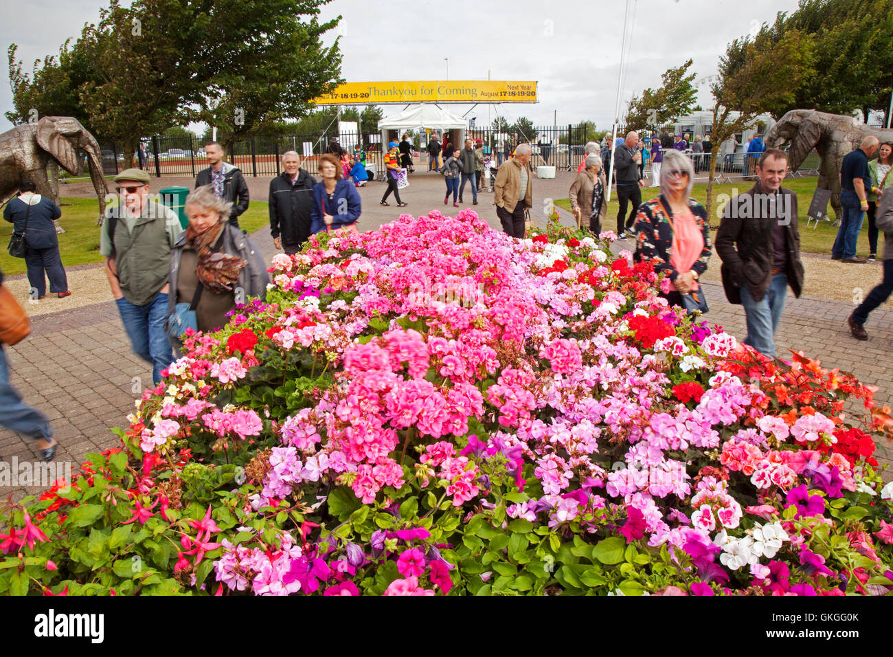 Southport Flower Show, Merseyside, UK. 21st Aug 2016:  As the good weather returns over the The Southport Flower - Stock Image