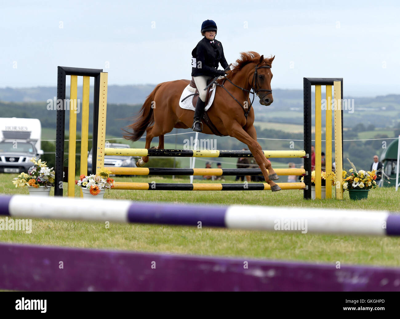 Buckham Fair, Dorset, UK, 'show jumping' - Stock Image