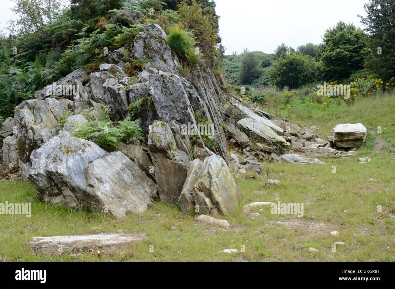 Craig Rhos-y-Felin Pont Saeson rock outcrop Crosswell Pembrokeshire - Stock Image