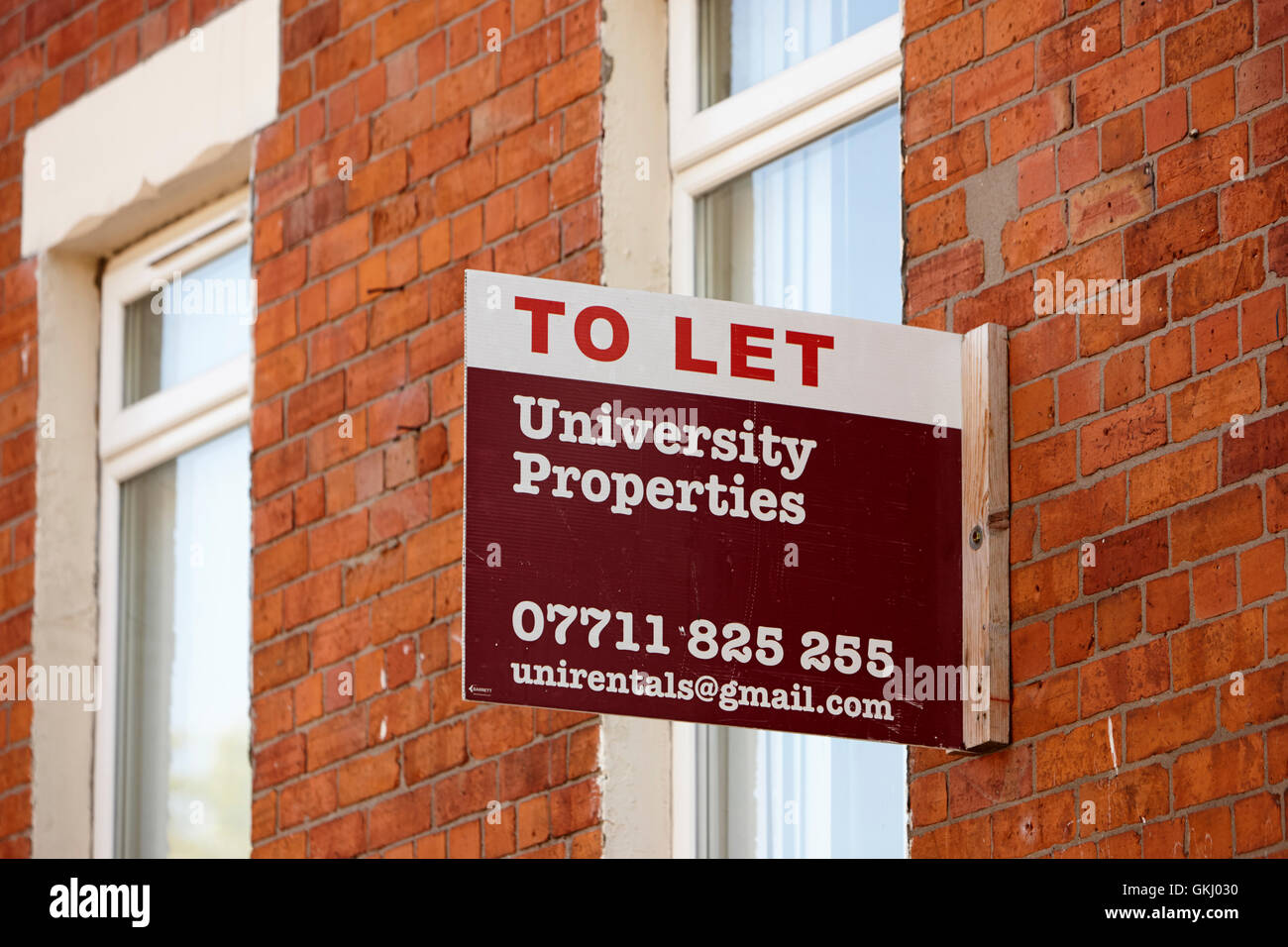 to let signs outside property in the holylands university area of belfast - Stock Image