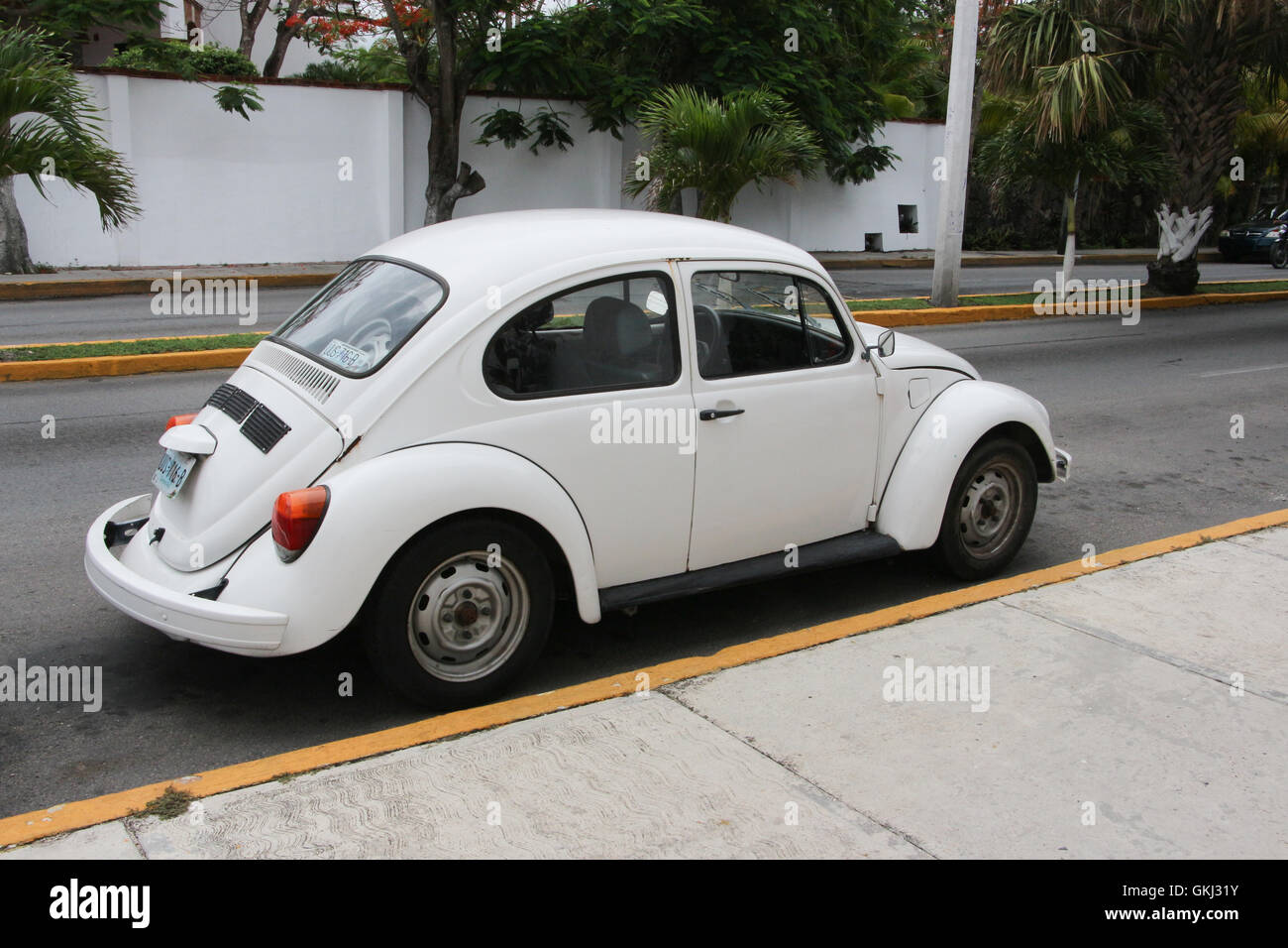 Punch Buggy Car >> Volkswagen Mexico Punch Buggies Punch Buggy Stock Photo 115338215