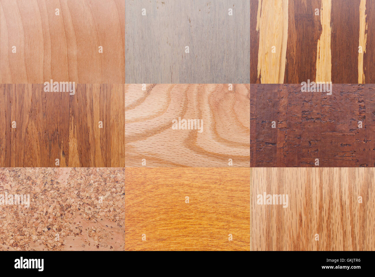 Various Tree Type Wood Grain Patterns And Textures Stock