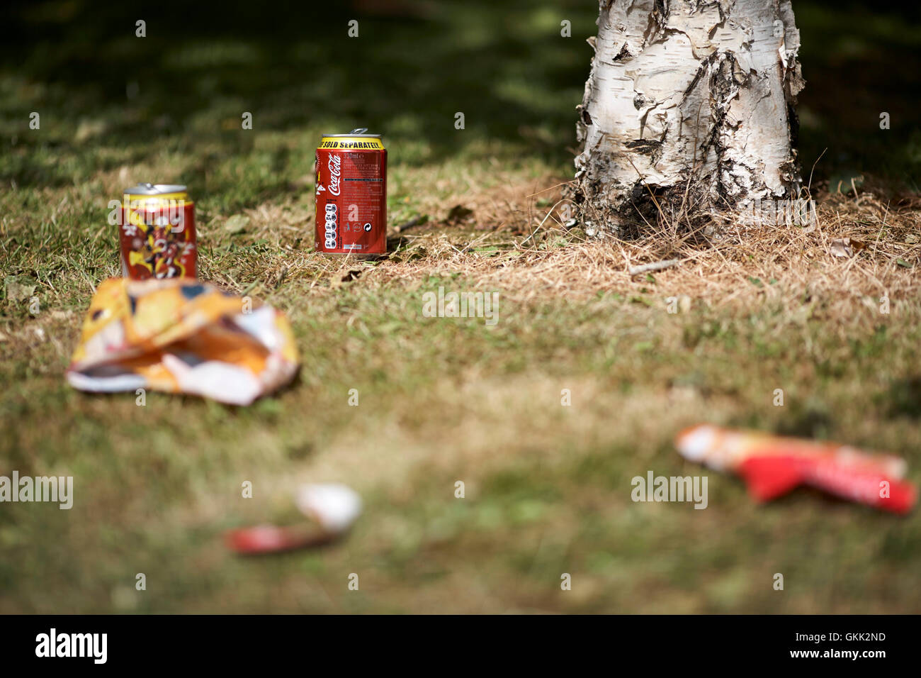 coke cans and other rubbish left behind after a summer picnic - Stock Image