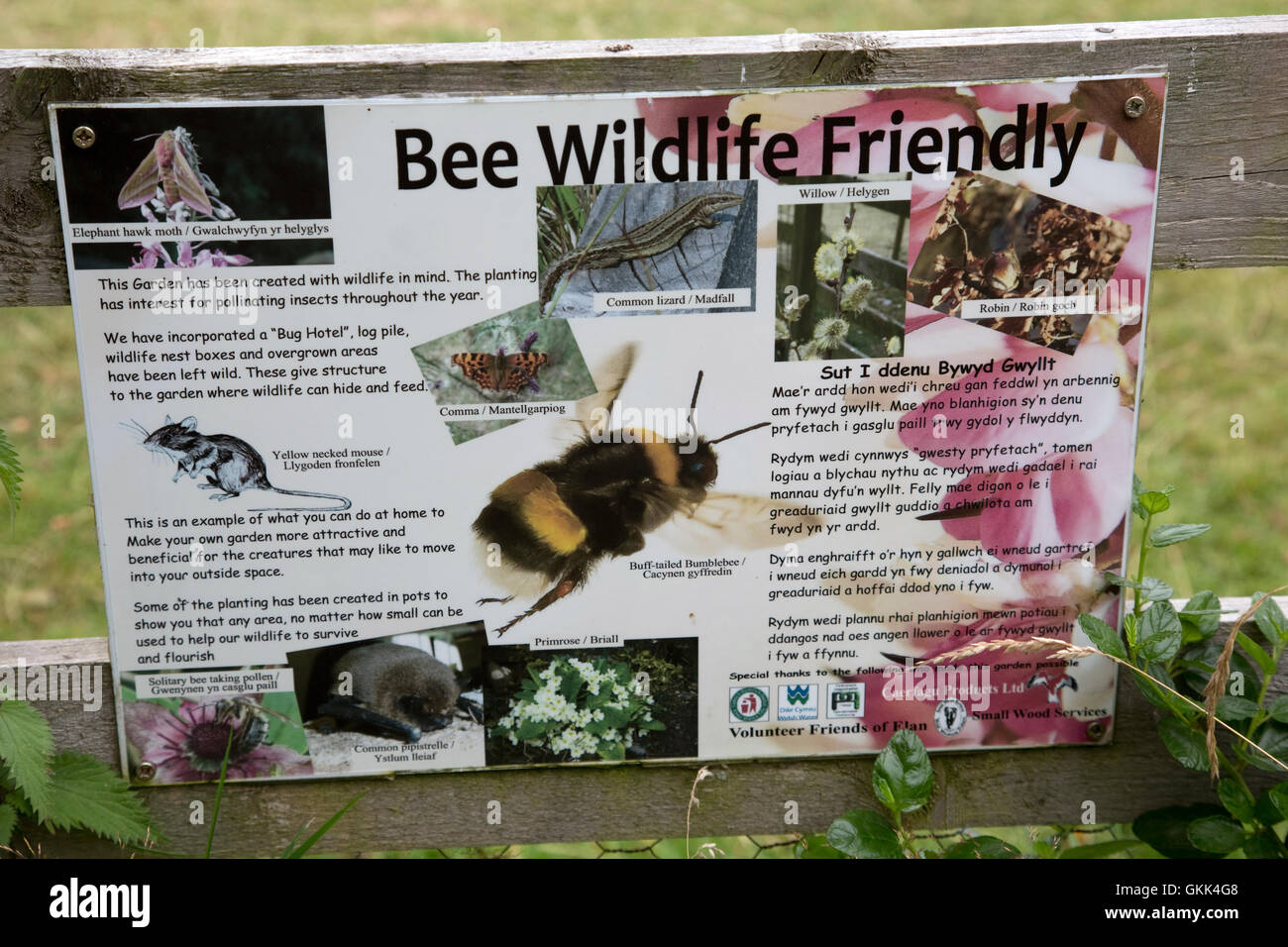 Bee wildlife friendly information board Caban Coch Elan Valley Mid Wales - Stock Image