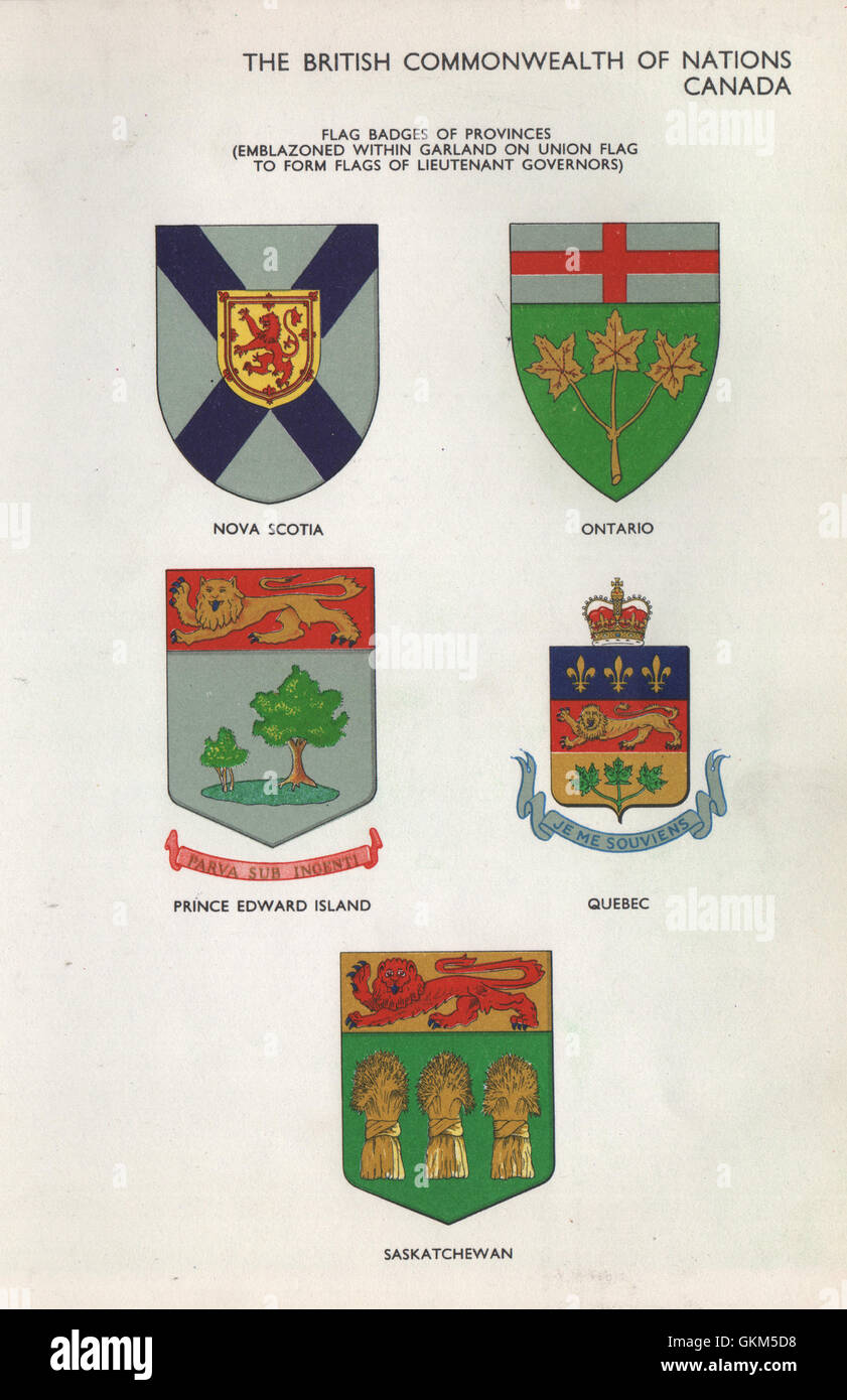 NEW CANADIAN PROVINCE .. PRINCE EDWARD ISLAND PEI PROVINCIAL FLAG SMALL IRON ON PATCH CREST BADGE ..