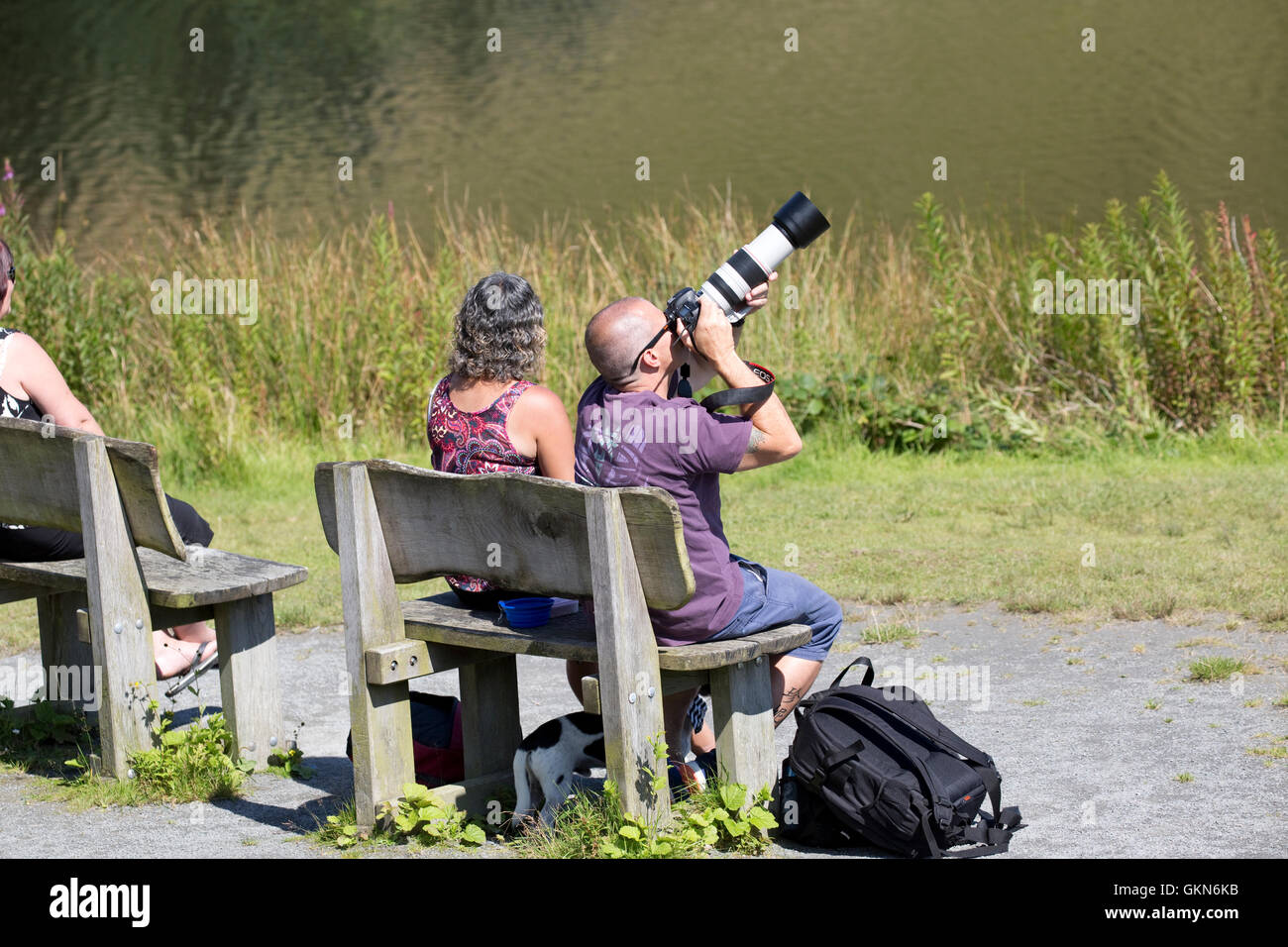 Woman and man sitting photographing birds with big telephoto lens Bwlch Nant Yr Arian Visitor Centre Ceredigion - Stock Image