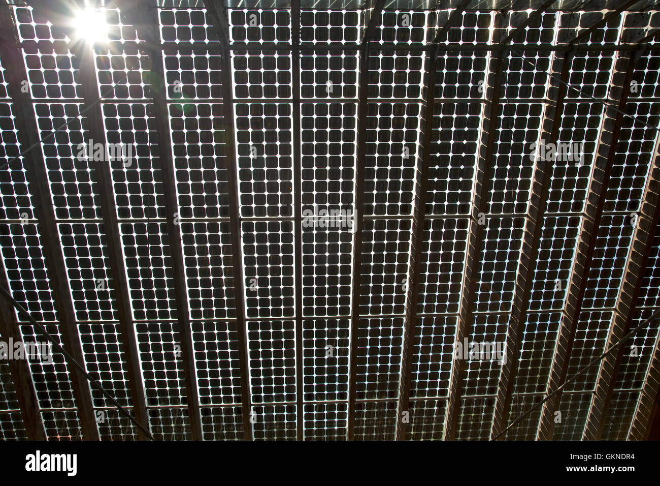 Glass integrated opaque PV roof seen from below providing  passive lighting Centre for Alternative Technology Machynlleth - Stock Image