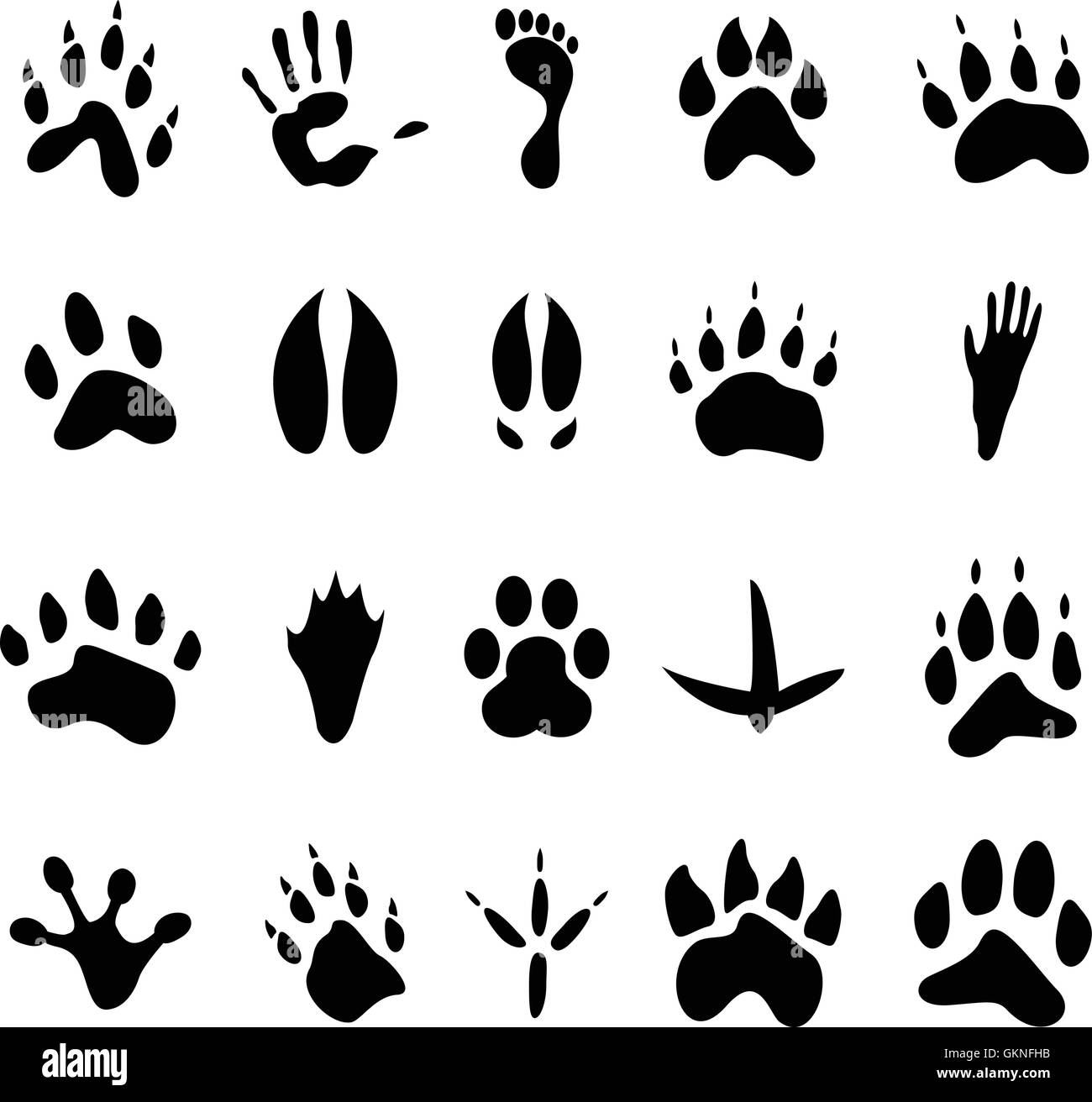 88abcde7182f animal human human being foot print paw track footmark footprint vector tracks  footprints footmarks