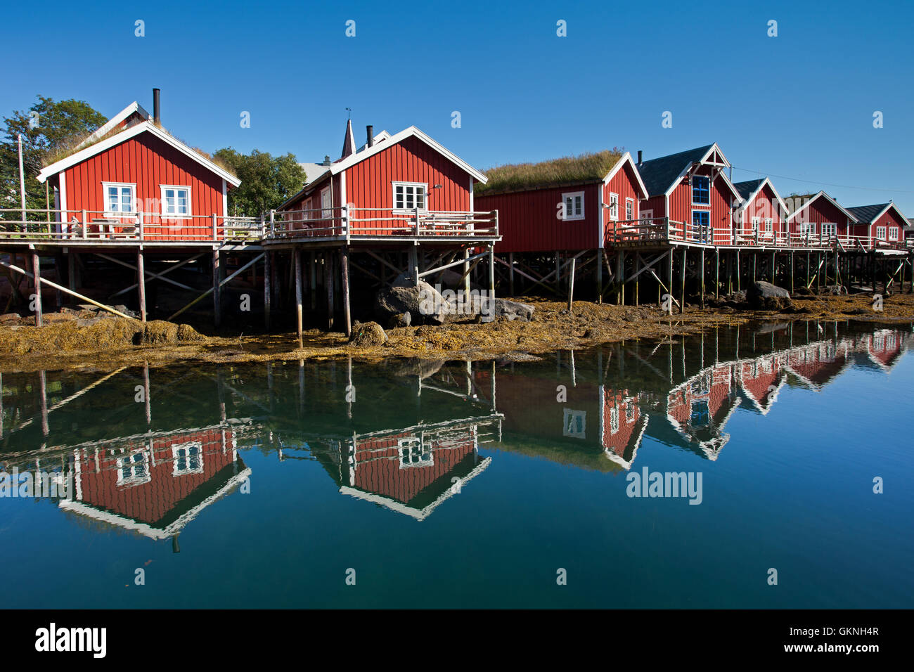 Reine: Rorbus and Reflections Stock Photo