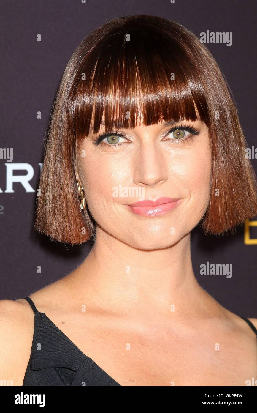 Beverly Hills, CA. 22nd Aug, 2016. Julie Ann Emery at arrivals for The Television Academy's Performers Peer - Stock Image