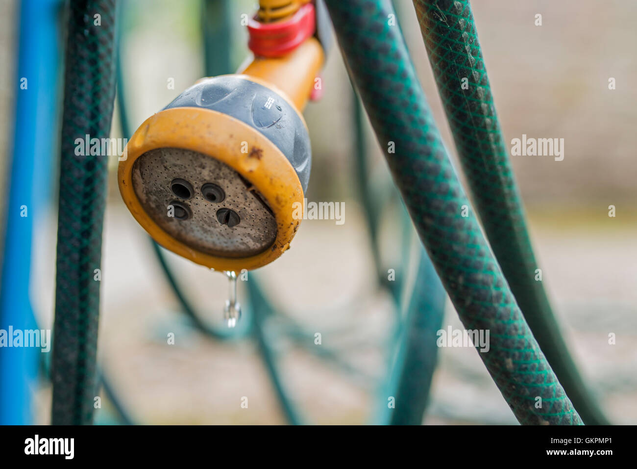 Garden hose and trigger head. - Stock Image