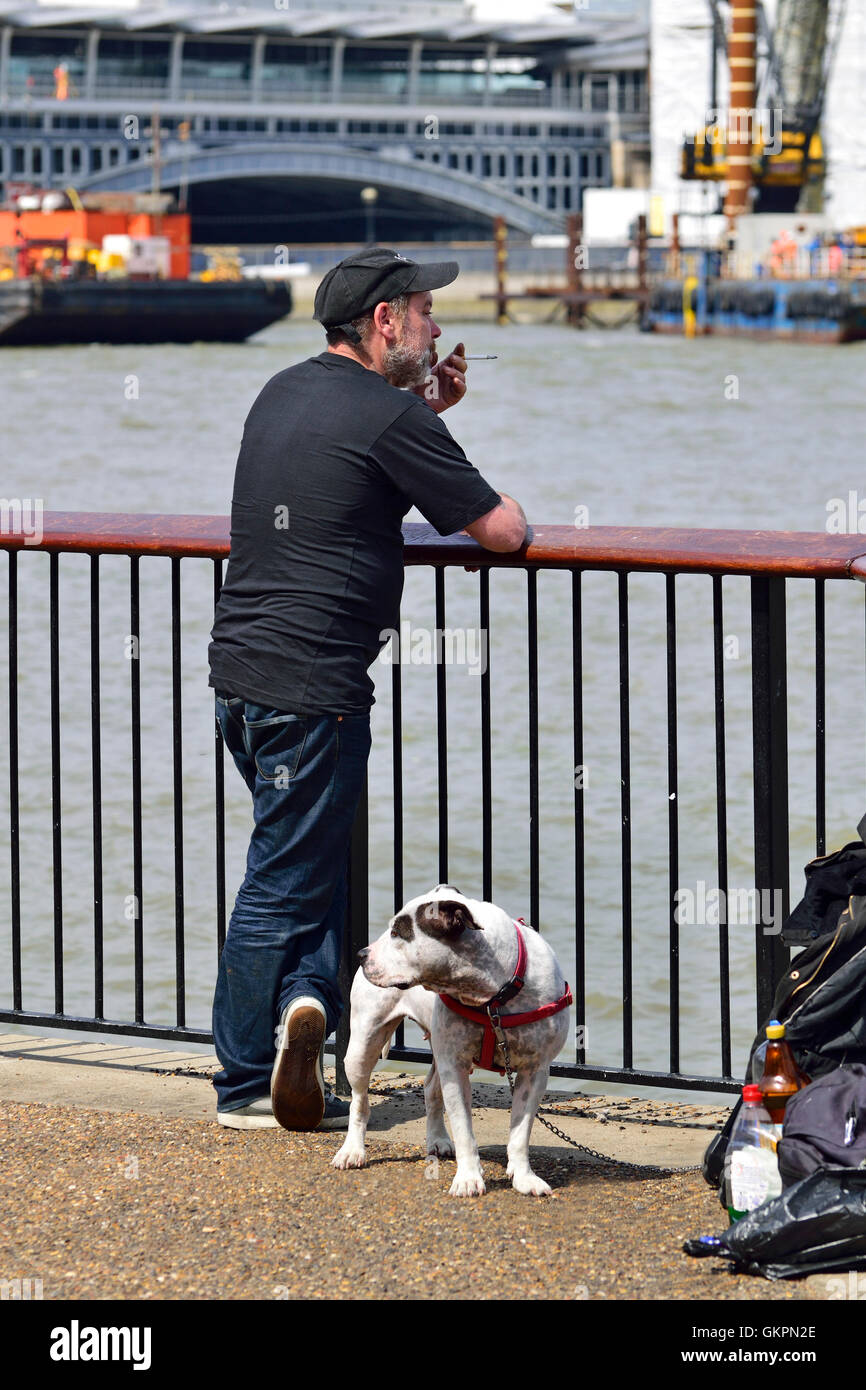 London England, UK. Man with a Staffordshire Bull Terrier (possibly cross), smoking, on the South Bank of the Thames - Stock Image