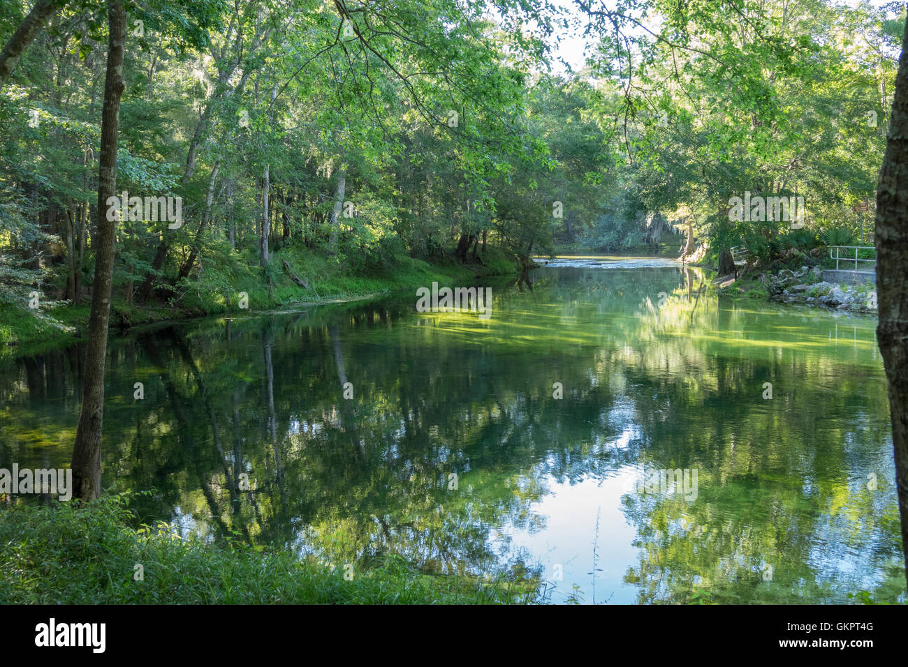 Poe Springs run at Santa Fe river, Gilchrist County, Florida - Stock Image